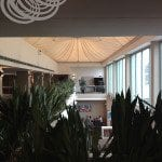 More Indoor Gardens Upstairs At Rydges Capital Hill Canberra