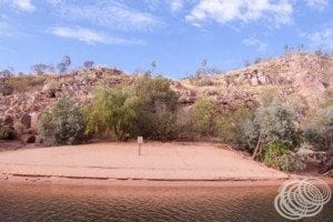 Crocodile nesting beach in gorge 1 at Nitmiluk (Katherine) Gorge