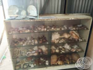 Pearling cabinet