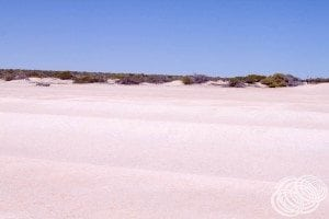 The rolling shell dunes of Shell Beach