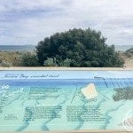 Jurien Bay Snorkel Trail Info