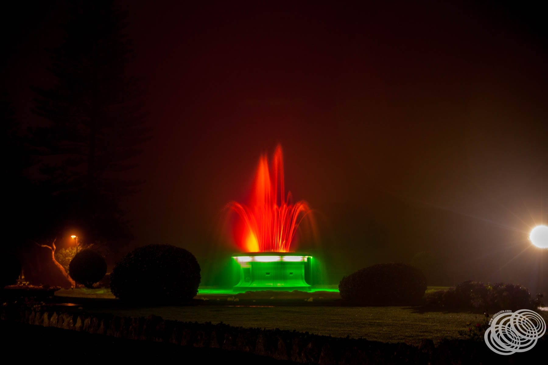 Tom Parker Fountain at Night