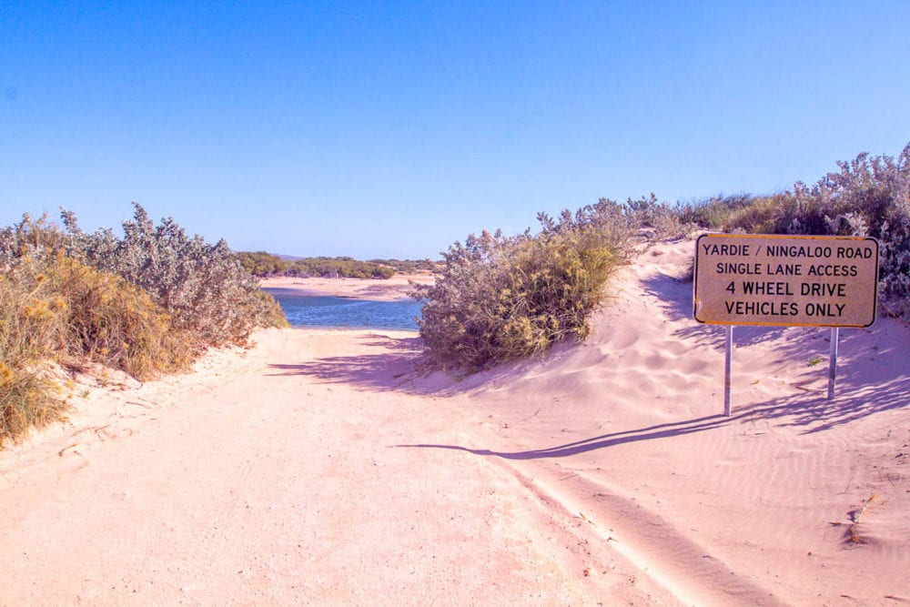 Yardie Creek Crossing - Ningaloo Road