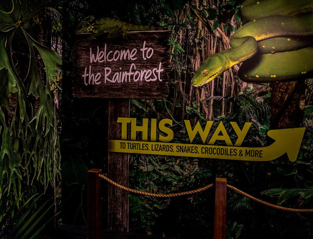 Welcome to the Rainforest Sign